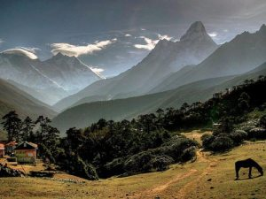 The Himalayas Again: Source Of Bliss and Wonder