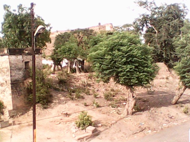 That's The Great Chunar Fort As Seen From Roof Top Of My Mother's Residence :-)