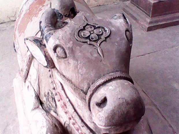 The Cute Nandi- The Bull So Dear To Lord Shiva!