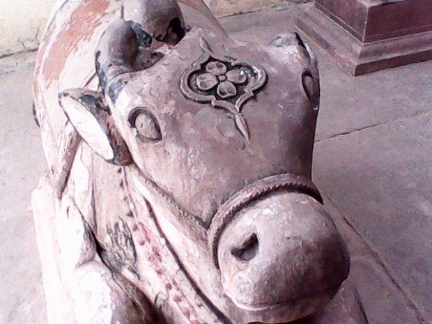 The Cute Nandi- The Bull So Dear To Lord Shiva!