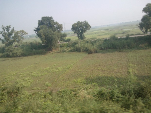 That's the road which connects Allahabad and Mirzapur..It's runs side by side the rail route to Mirzapur...