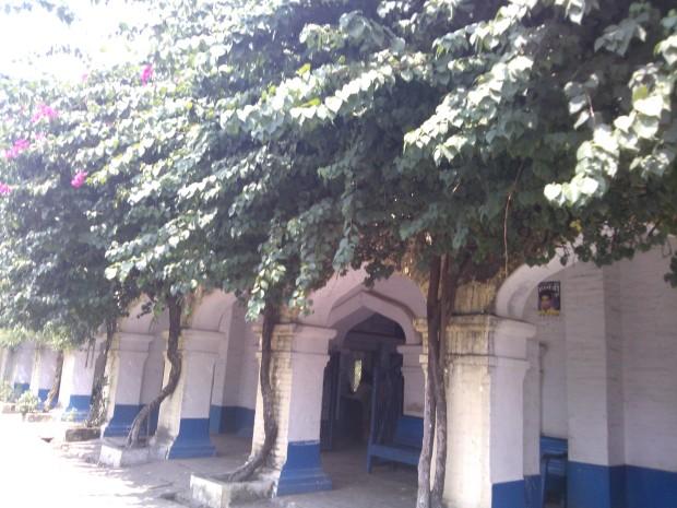 Pahara is a beautiful small station :-)