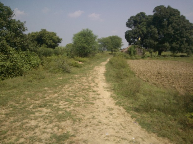 That's the muddy road ( Pagdandi)  moving along the defunct canal which takes visitors straight to my village Kanuara...Since this road moves side by side the canal it's easily traceable amid so many other smaller muddy routes :P