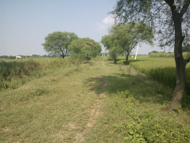 This beautiful muddy route, connecting Pahara Railway Station with Kanaura village, always haunts my consciousness!!!