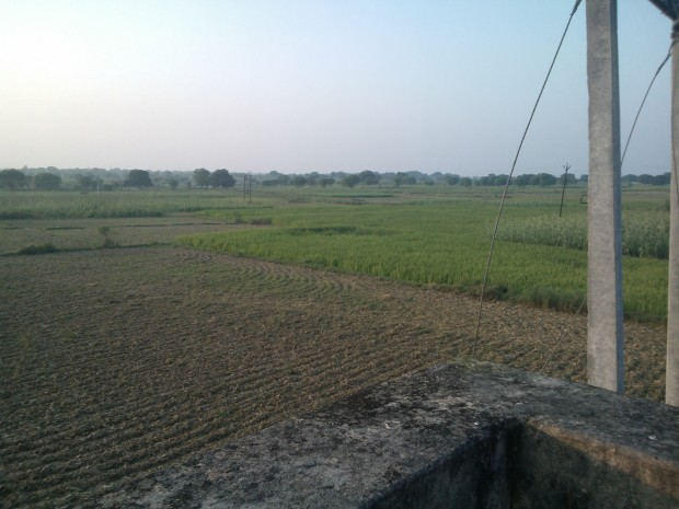 Another view of my fields from my rooftop :-) The vacant space you notice is meant for growing potatoes :p
