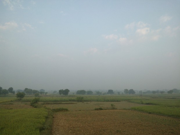 Another view of my fields!!