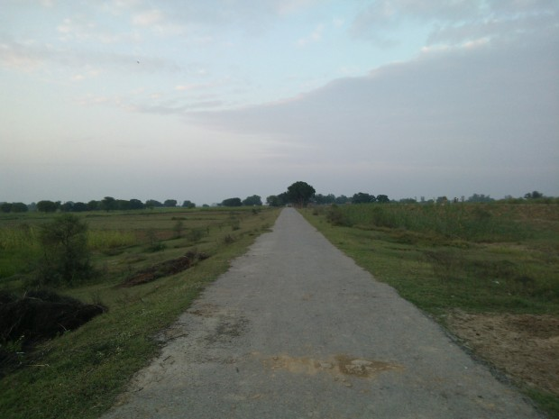 This road leads straight to home built by my ancestors in the heart of villlage Kanaura.  This road is right in front of my new home at the fields.