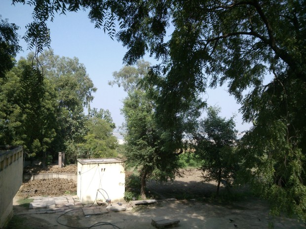 View of Ganges Between The Neem Trees From My Rooftop :-) :-) :-)