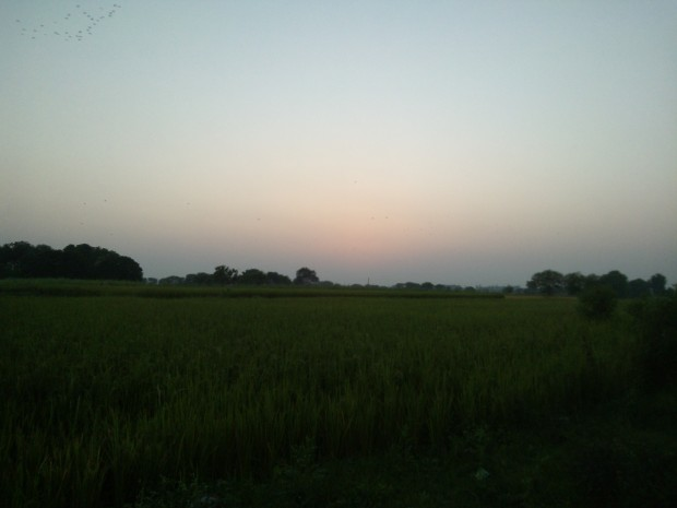 Evening Hours In My Village...