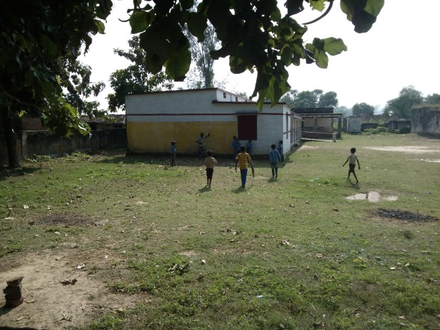 Kids Playing Cricket....
