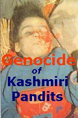 अमेरिका में मानवाधिकार की ऊँची ऊँची बाते करने वाली संस्थाओ ने कभी भी कश्मीरी पंडितो के दुर्दशा को संज्ञान में नहीं लिया !