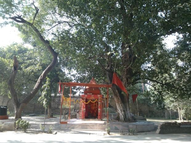 Eco friendly Hanumanji inside Khusro Bagh :P