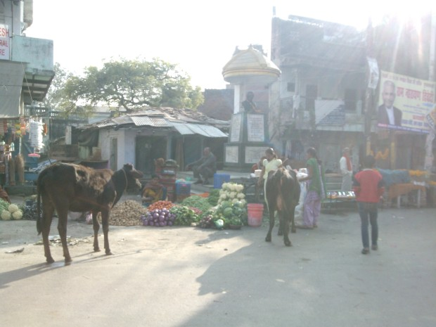 Close to the Sangam area lies Allahbad's  Daraganj area. Allahbadi's best remember it for Niralaji's presence, who happened to be doyen of Hindi literature. Notice his statue behind the vegetable shop!