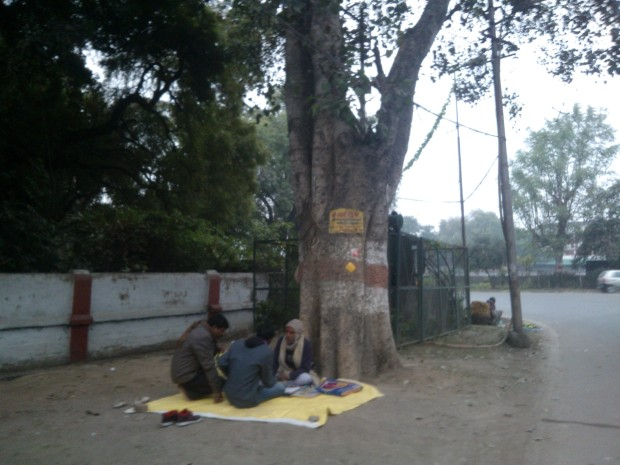 Worried about your future :P Consult him in Civil Lines under this tree :P