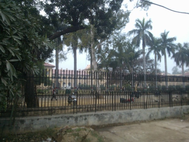 Greenery is in abundance at Allahabad High Court :P :P :P