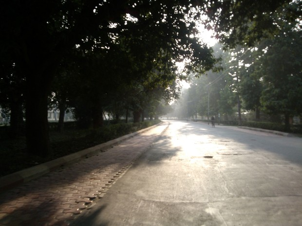 Roads Spread On The Campus Of Benaras Hindu University Were Not Only Clean But Also Empty!