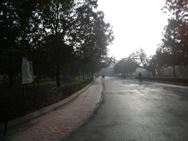 A Beautiful Road Leading To New Vishwanath Shiva Temple situated on the campus of Benaras Hindu University :-)