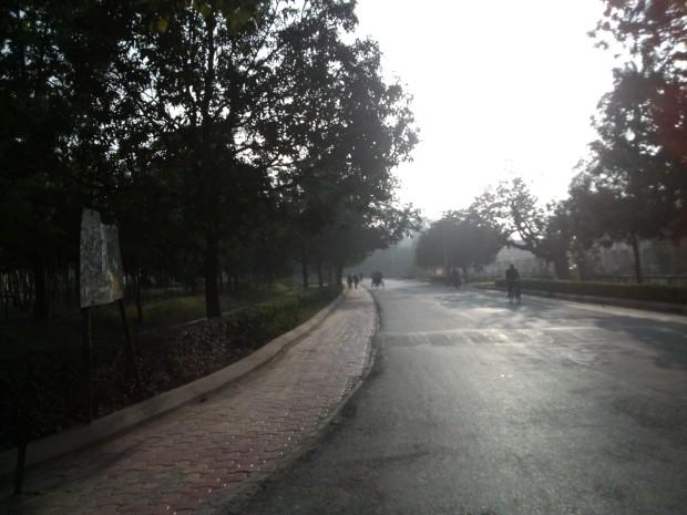 A Beautiful Road Leading To New Vishwanath Shiva Temple situated on the campus of Benaras Hindu University :-)