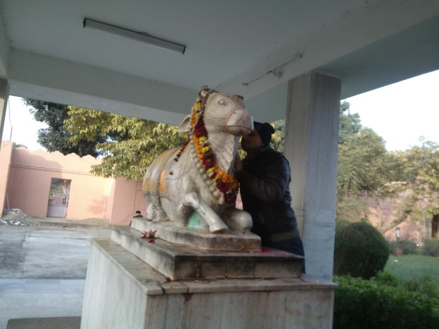 Nand The Bull Also Acts As Transmitter :P Devotees Of Shiva Believe That Whatever One Speaks Into The Ears Of This Bull Reaches Straight To Lord Shiva :-) My Brother-in-Law Did Not Miss The Opportunity :P
