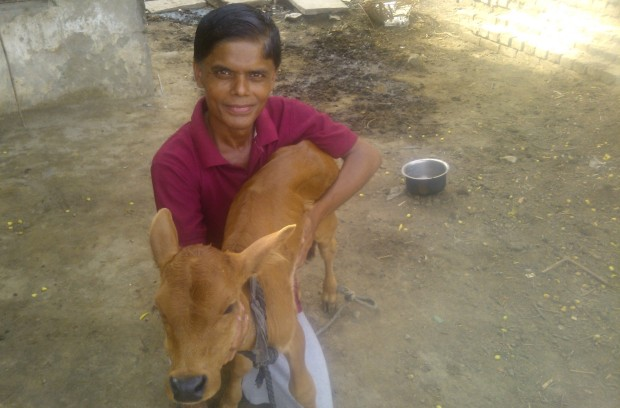 The Calf In My Arms Which Refused To Go Away With Kids ha..ha .ha