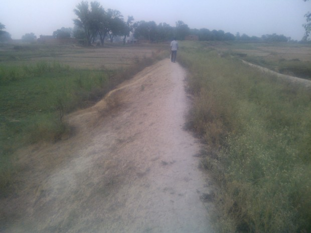 Canals Are Important Means Of Irrigation. However, in Uttar Prdesh Canals have become defunct...