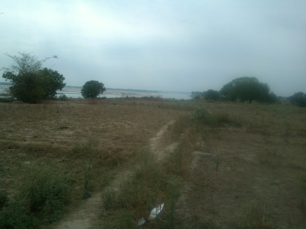 Fields near the banks of  Ganges....