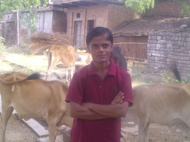 With The Sweet Cows....