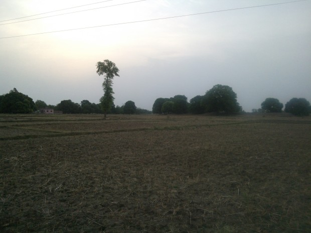 Morning Hours In My Village....