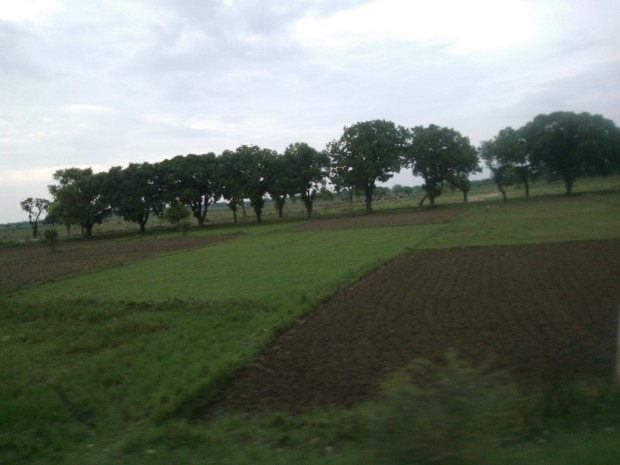 View outside the train's window...