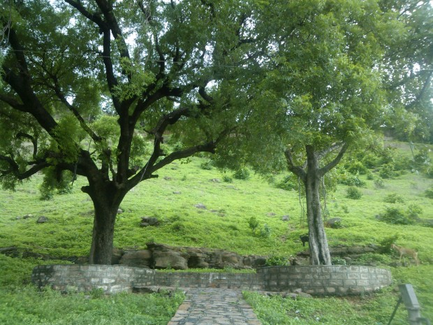 Saintly Figure Ma Anandmayi Rested At This Place During His Chunar Visit in 50s.