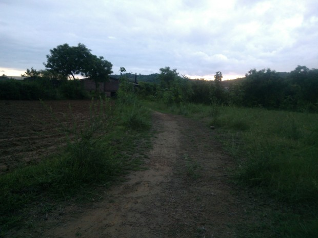 A Poetic Path Leading To House In Jungle :P